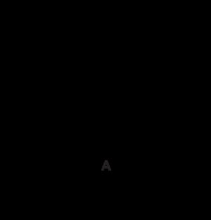 SP56 Dimensional Diagram